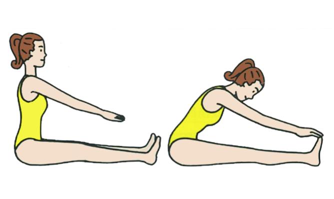 体の前屈運動